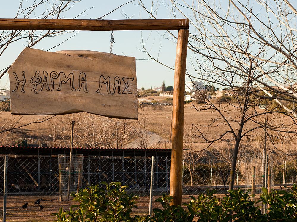 Η Φάρμα του Παιδικού Σταθμού μας στο Πανόραμα Θεσσαλονίκης